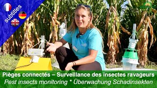 Connected traps – monitoring pest insects