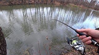 Способы ловли щуки осенью с берега