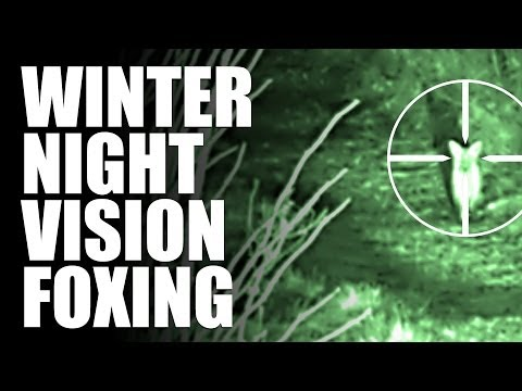 Winter Night Vision Foxing