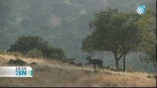 Video del alojamiento San Jose