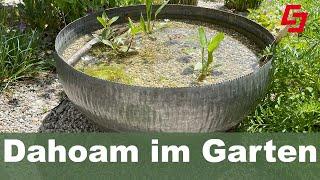 Alles für den kleinen Garten, Wasser, Wildsträucher, Blumenwiese im Topf, schöne Hochzeitstischdeko