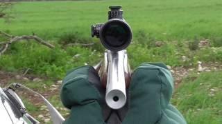 The CZ 455 Varmint 17 HMR Review - hmong video