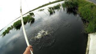 Рыбалка на ПАУК (подъёмник) ОХРЕНЕВШИЙ СЕЛЕЗЕНЬ