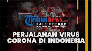 KALEIDOSKOP 2020: Perjalanan Penyebaran Virus Corona, Kasus Pertama di Indonesia hingga New Normal