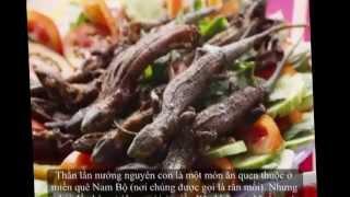 Top Horror Foods In VietNam