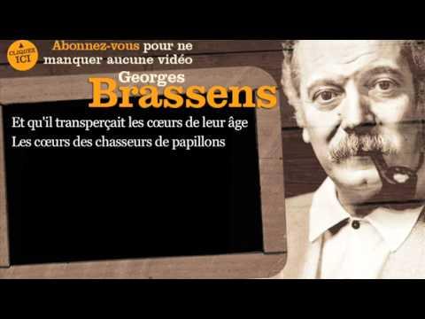 Georges Brassens - La chasse aux papillons - Paroles ( karaoké )