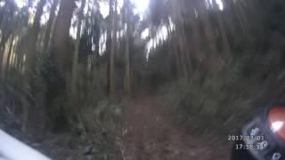 大分県大分市佐野清掃センター前からの林道