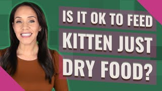 Is it OK to feed kitten just dry food?