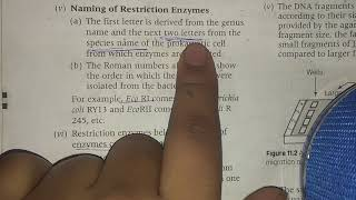 Namin Of Restriction Enzymes Class 12 Biotechnology