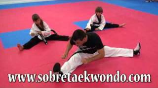 Stretch training in Taekwondo