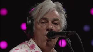 Robyn Hitchcock - Madonna of the Wasps (Live on KEXP)