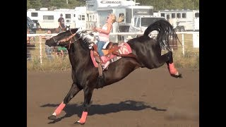 Barrel Racing Series #3 From McHenry County Saddle Club