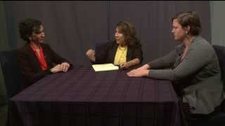 Justice Matters - Immigration Attorneys discuss DAPA and Extended DACA (English Vers.)