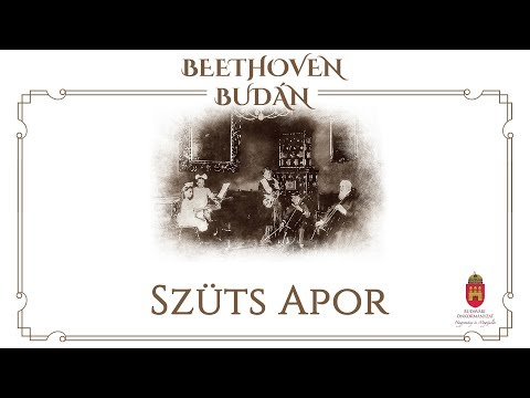Házimuzsika - Szüts Apor - video preview image