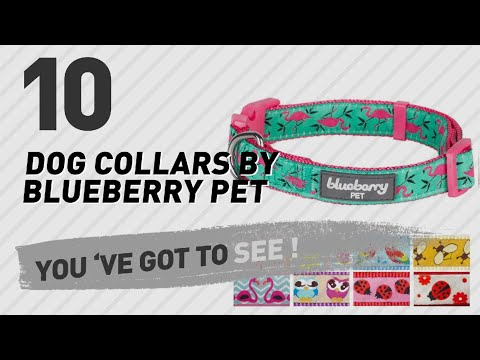 Dog Collars By Blueberry Pet // Top 10 Most Popular