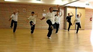 preview picture of video 'QiGong_Demo.avi'