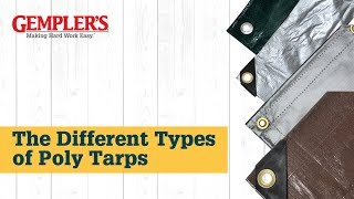 The Different Types of Poly Tarps and the Best Tarp for What You Need Covered | Tips from GEMPLER'S