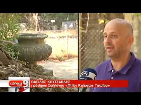 Το Τατόι βγαίνει από την παρακμή | 01/09/2019 | ΕΡΤ