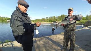 Рыбалка в конакова на грэс
