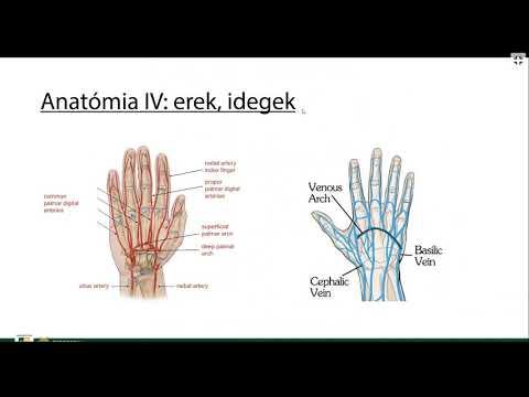 Artritisz artrózis kezelő készülék