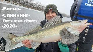 Сезон рыбалки в тюмени 2020