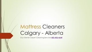 Mattress Cleaners Calgary (Oxy-Genie) Mattress Stain Remover Review