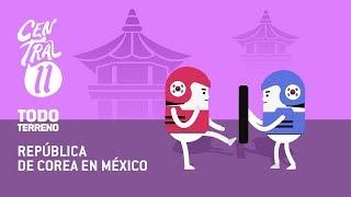 Central 11 TV - Central Once Todo Terreno: República de Corea en México