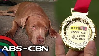 Bayani si Doggie | Rated K