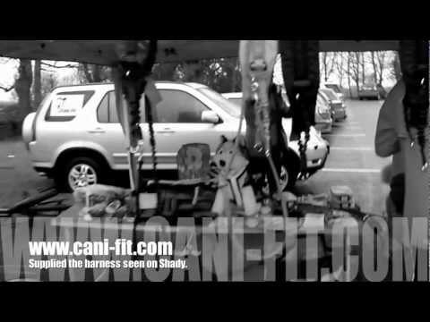 Canicross Anglais - canicross