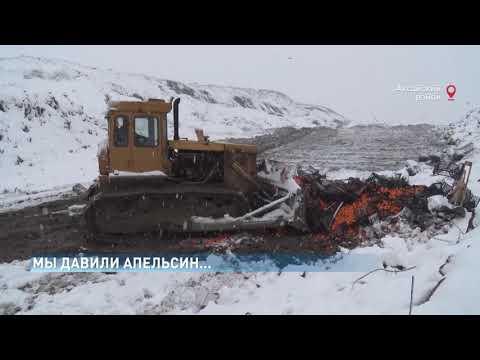 В Ростовской области уничтожено более 4 тонн растительной продукции, запрещенной к ввозу в Российскую Федерацию