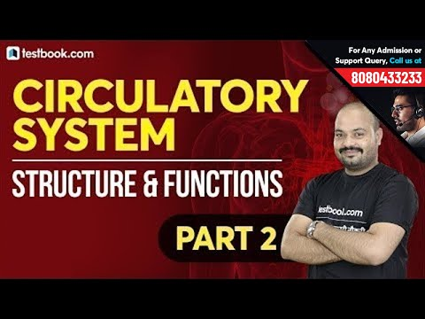 Circulatory System in Human Body   Part 2   Structure and Functions   Biology for RRB & SSC