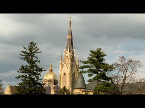 The president of the University of Notre Dame in Indiana said the school will donate $100,000 toward the renovation of Notre Dame cathedral. The University's basilica bell rang 50 times on Tuesday, to mark the Paris cathedral's rebuilding. (April 17)