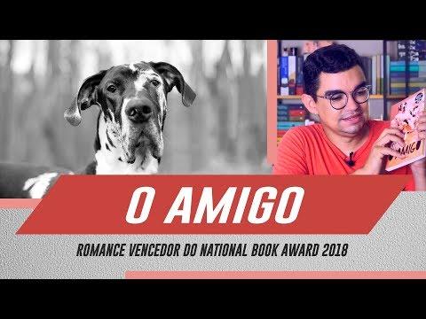 O Amigo (Sigrid Nunez) - Livro surpreendente de autora pouco conhecida no Brasil