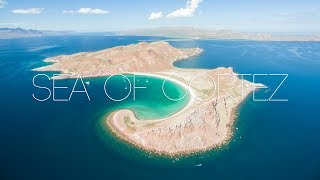 Sea of Cortez Cruise with Offshore Outpost