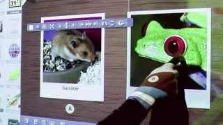MozaBook 4.5 - Educational Presentation Software