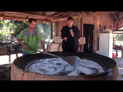A produção da farinha de tapioca no distrito de Demarcação - Gente de Opinião