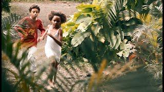 Trailers y Estrenos Pequeño país - Trailer español anuncio
