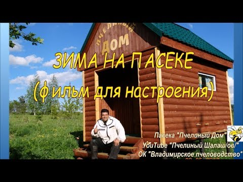 ЗИМА НА ПАСЕКЕ. для настроения  (WINTER IN THE APIARY. for mood)