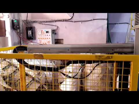 In Mould Label Robot