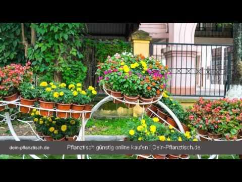 Pflanztisch - Was beim Pflanztisch Kauf zu beachten ist