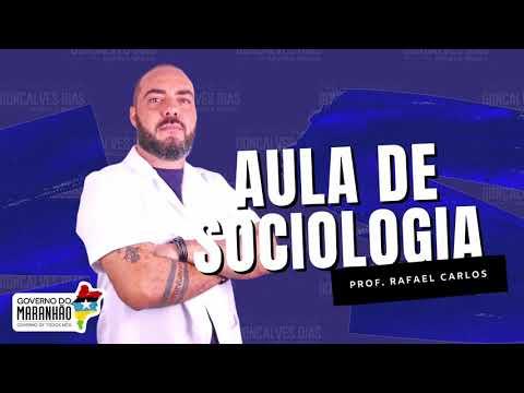 Aula 02 | Relação entre indivíduo e a sociedade na Sociologia Clássica - Parte 03 de 03 - SOCIOLOGIA