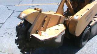 Stump Grinding in Seattle with Ballard Tree Service
