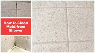 Cleaning Mold: How to Remove Mold From Shower Wall Grout