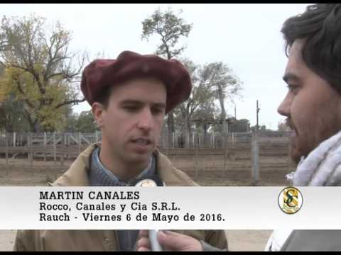 Martin Canales 106