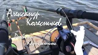 Карповые удилища daiwa black widow carp