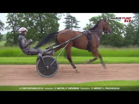 Paris-Turf TV : Jean-Michel Bazire : Elitloppet J-6 : Aubrion s'aiguise