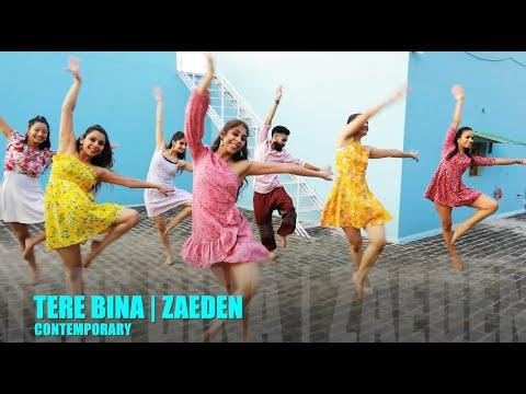 Tere Bina - Zaeden   Contemporary Dance   Stance Dance Studio Choreography