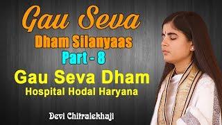 Gau Seva Dham Silanyaas Part - 8  Gau Seva Dham Hospital Hodal Haryana Devi Chitralekhaji