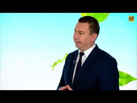 Система мониторинга экологии в Беларуси - что это и как работает?
