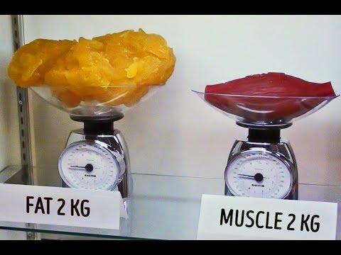 Висцеральный жир как похудеть